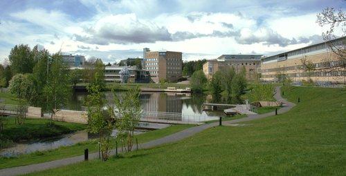 Umeå_University_Campus_pond-2012-06-06.jpg